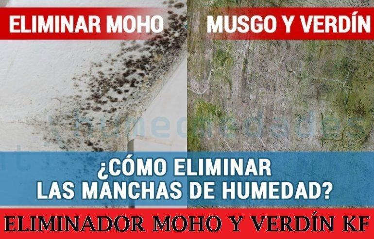 Moho en paredes great condensacin moho y manchas en paredes tenemos la solucin with moho en - Moho en las paredes ...